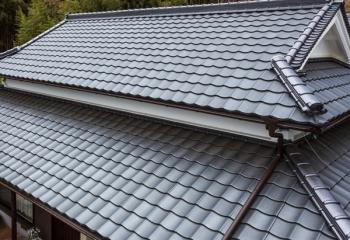 ルーガの屋根