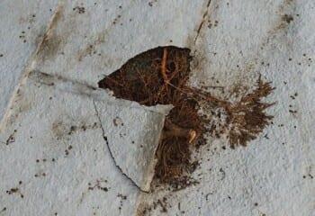 屋根材のひび割れ