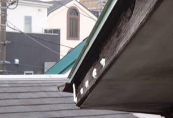 木材系破風板