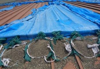 横浜市の工場 雨漏り応急処置