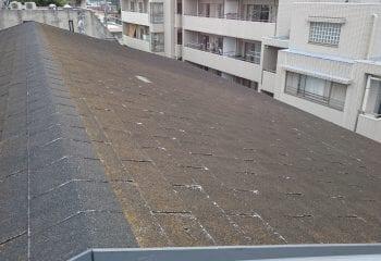 2.杉並区の雨漏り修理 既存屋根 アスファルトシングル