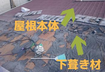 屋根本体 下葺き材