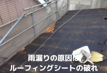 雨漏りの原因はルーフィングシート(下葺き材)の破れ