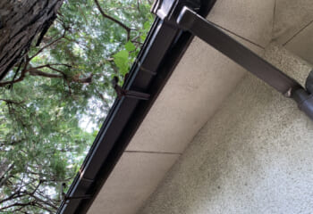 大きな樹木の下にガルバリウム鋼板屋根を張る場合は落ち葉や枝木に注意