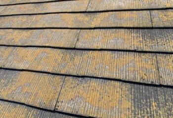スレートの苔は見栄えだけの問題であり屋根の機能に影響は全くない