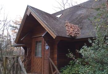 屋根と落ち葉